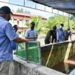 Lawatan Timbalan Ketua Setiausaha (Pembangunan), Kementerian Pertanian dan Industri Makanan (MAFI), Datuk Badrul Hisham Bin Mohd ke Fisheries Research Institute Langkawi (FRI Langkawi).