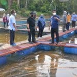 Working Visit of the Director General of Fisheries Malaysia, Tuan Ahmad Tarmidzi bin Ramly AMK to the Freshwater Tilapia Fish Farm in TUCG Enterprise Cages in Manir, Kuala Terengganu.