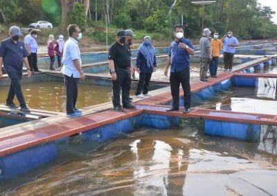 Lawatan Kerja Ketua Pengarah Perikanan Malaysia, Tuan Ahmad Tarmidzi bin Ramly AMK ke Ternakan Ikan Tilapia Air Tawar Dalam Sangkar TUCG Enterprise di Manir, Kuala Terengganu.